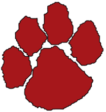 One Cougar Paw